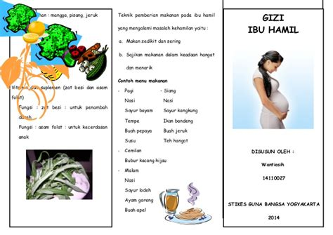 Contoh Masalah Kehamilan Leaflet Gizi Ibu Hamil