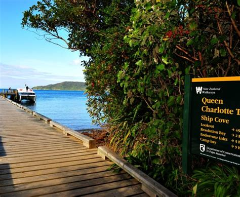 Picton Boat Trips by Things To Do In Picton Marlborough Sounds Tours Cruises