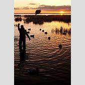 Duck Hunting Ba...