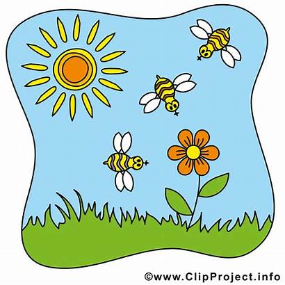 Sommer Clipart Bienen Cliparts Clipground Info