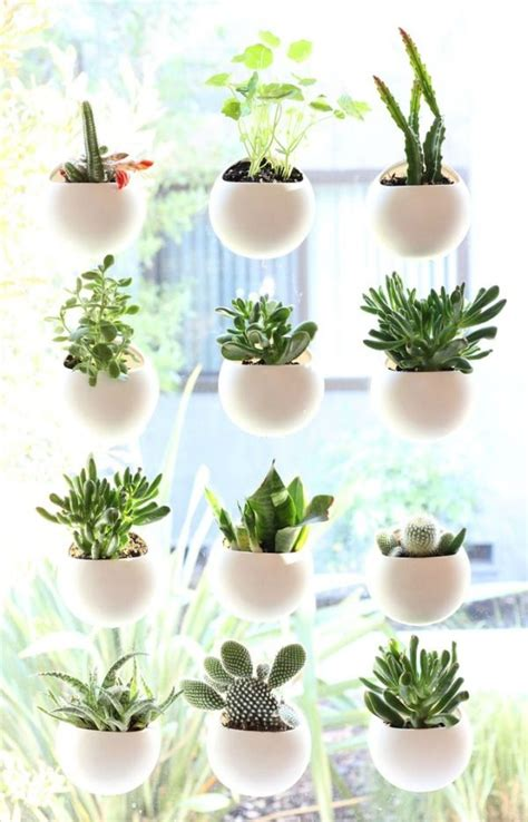 Window Potted Plants by Small Space House Plant Display Ideas In 2019 For