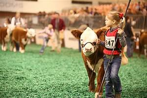 2016 Houston Livestock Show And Rodeo Proves Fourth