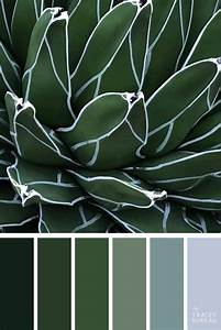 Green, Plant, Image, By, Gary, Howard