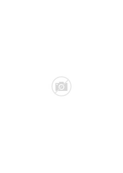 Philodendron Split Pot Afloral Tropical Fake Plant