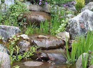 Teich Im Garten : bachlauf im garten ein toller hingucker zooroyal magazin ~ Lizthompson.info Haus und Dekorationen
