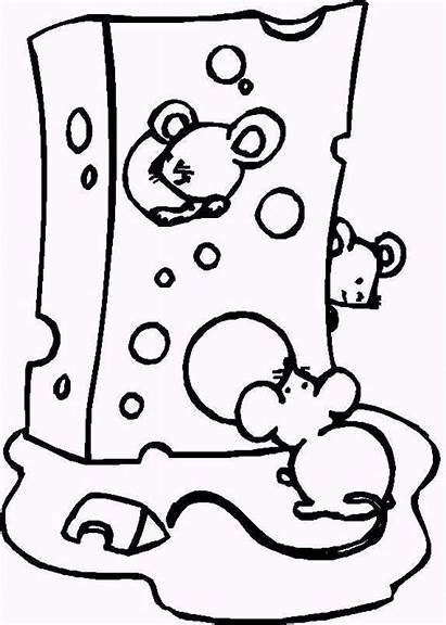 Coloring Pages Cheese Sheets Canned Muis Printable