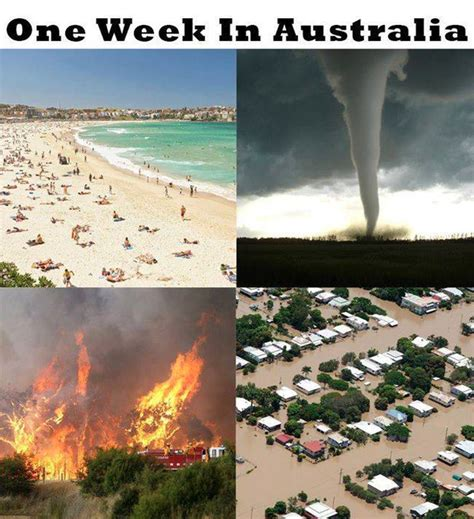 Australian Memes - 29 of the funniest memes about australia funny memes weather and australia