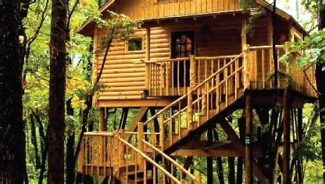 treehouse cottages eureka springs ar original treehouse cottages eureka springs arkansas
