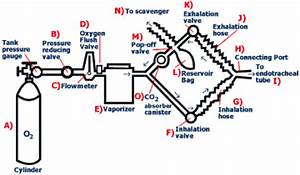 Anesthesia  Breathing Circuits