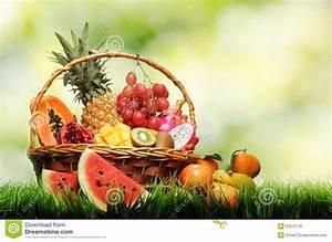 Panier A Fruit : panier des fruits tropicaux sur l 39 herbe verte photo stock image du kiwi normal 29312718 ~ Teatrodelosmanantiales.com Idées de Décoration