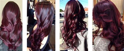 Best 25+ Eggplant Hair Colors Ideas On Pinterest