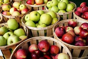An Apple A Day: Why Apples Are So Good For Your Skin