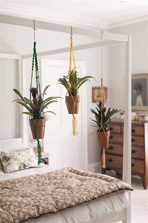 house gardener  isabelle palmer  joy  plants