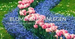 Balkonkästen Gestalten Ohne Blumen : blumenbeet anlegen mehr als 40 tipps f r ihr blumenbeet ~ Bigdaddyawards.com Haus und Dekorationen