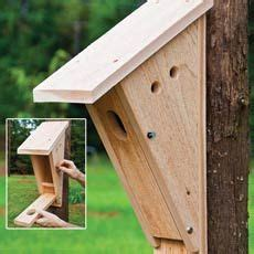 audubon birdhouse plans home plans peterson blue bird house plans bird houses diy