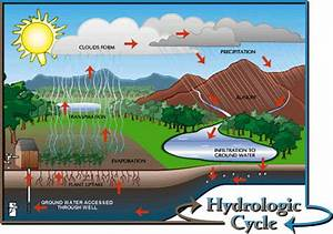 Activity 1  Hydrologic Cycle
