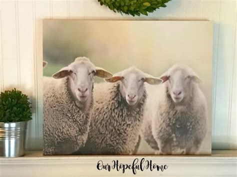 hopeful home farmhouse sheep wall art  canvas