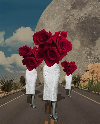 Gifs Surreal Collage Isabel Chiara Power Giphy
