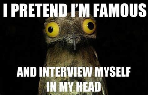 Potoo Bird Meme - m 225 s de 1000 ideas sobre potoo bird en pinterest p 225 jaros y b 250 ho cornudo