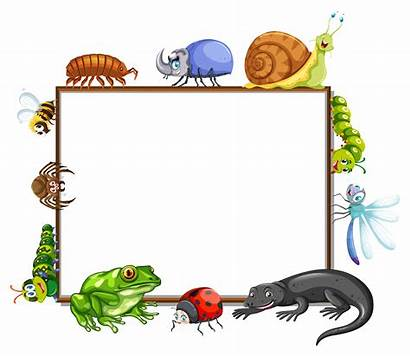 Border Insects Template Many Vector Frog Illustration