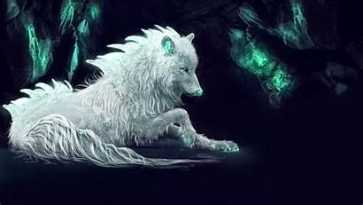 Wolf Fan Laptop 1080p 4k Wallpapers Backgrounds