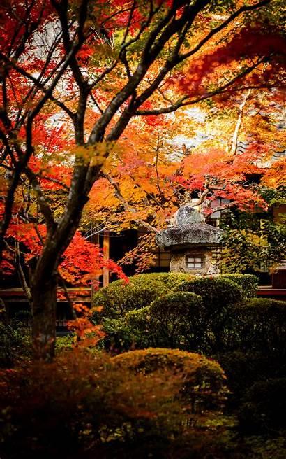 Japanese Desktop Garden Fall Background Vertical Wallpapers