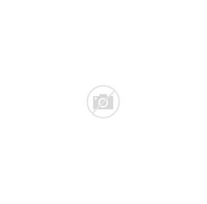 Curriculum Circle Diagram Structure