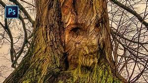 Comment Creuser Un Tronc D Arbre : photoshop incruster un visage dans un tronc d 39 arbre youtube ~ Melissatoandfro.com Idées de Décoration