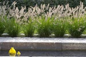 Gräser Im Garten Gestaltungsideen : 18 pflegeleichte gestaltungsideen mit gr ser pflanzen deko feiern gartenarbeit zenideen ~ Eleganceandgraceweddings.com Haus und Dekorationen