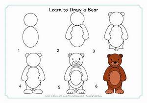 Learn to Draw a Bear