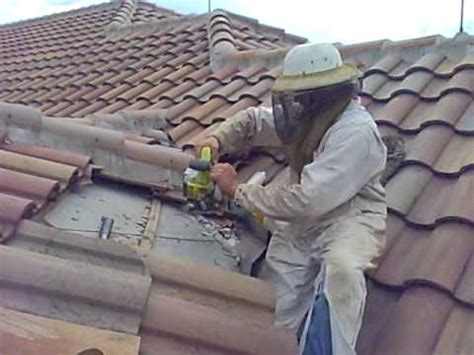 honey bees in barrel tile roof orlando bee removal 321