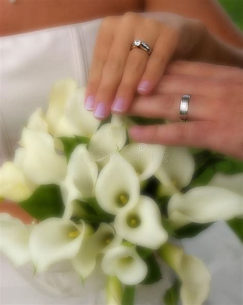 wedding rings with flowers stock photo image of flowers