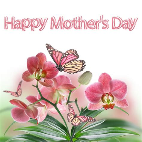 happy mothers day to my happy mothers day cards