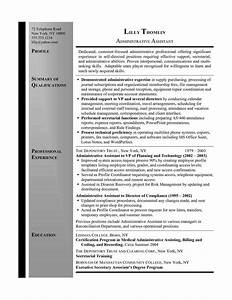 1000 ideas about executive resume on pinterest for Executive assistant resume summary
