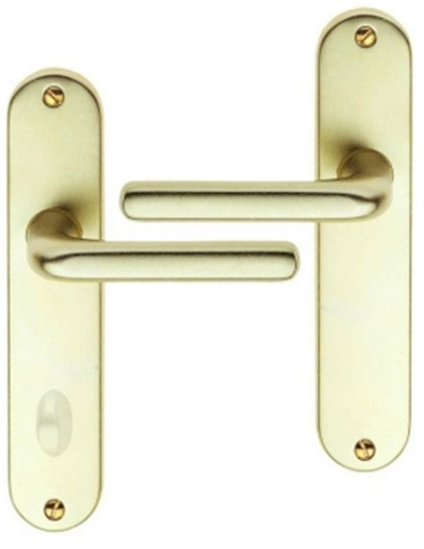 poign 233 e de porte int 233 rieure pas cher en aluminium anodis 233 chagne f2 sur plaque conda entraxe