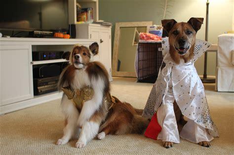 Best Halloween Costumes Ideas 2015