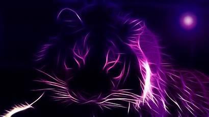 Neon Tiger Wallpapers Lion Desktop Abstract Purple