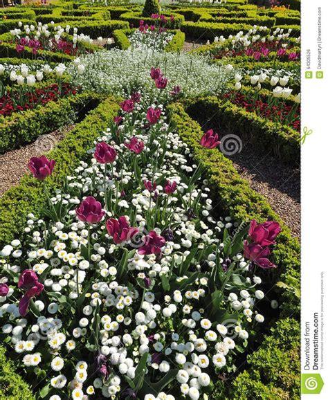 Tulips Stock Photo Image Of Knit, Avon, Formal, Gardens