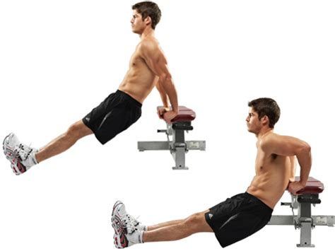 Bench Dips Workout by The 30 Most Powerful Arm Exercises For Titanic Toned Arms