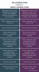 Difference Between Plasmolysis And Deplasmolysis