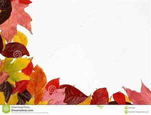 Fall Leaves Corner Stock Photography - Image: 6943252