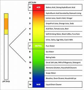 Ph Strip And Ph Scale