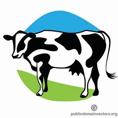 Cow Dairy Farm Vector Clipart Clip Domain
