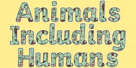 Image result for animals including humans banner