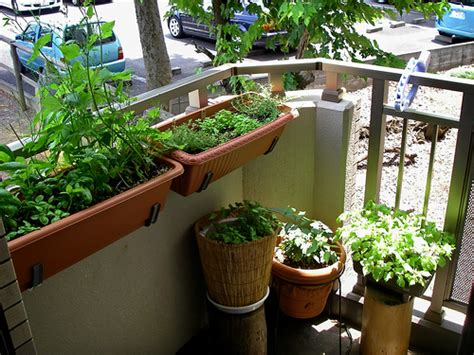 Quality Soil Herb Garden Ideas For A Balcony