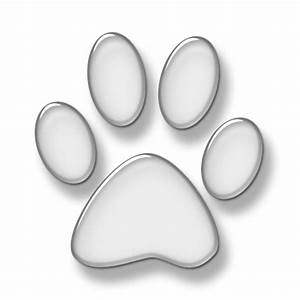 Best Photos of Paw Print No Background - Puppy Paw Print ...