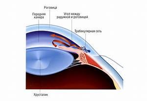Лечение гипертонии при глаукоме