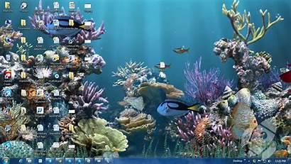 Aquarium Animated 3d Wallpapers Moving Desktop Fish
