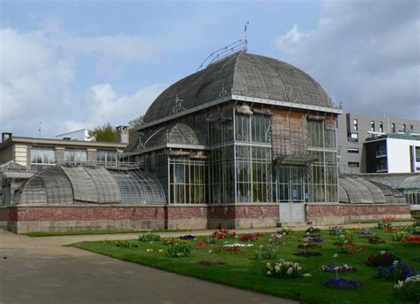 panoramio photo of serre du jardin des plantes palmarium