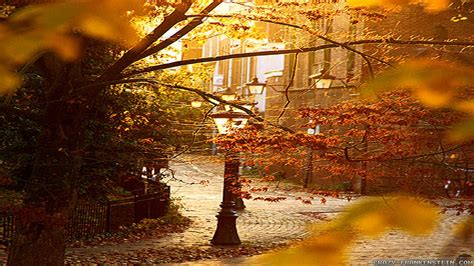 Fall Backgrounds by Beautiful Fall Pictures Wallpapers Wallpaper Cave